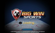 Is Big Win Hockey Broken?